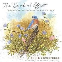 The Bluebird Effect: Uncommon Bonds with Common Birds (English Edition)
