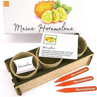 Meine Hornmelone - Ein originelles Geschenk für jeden Anlass. «Kiwano» zum Züchten. Ideales Pflanzset als Geschenk zu Ostern, Vatertag, Muttertag, Geburtstag.