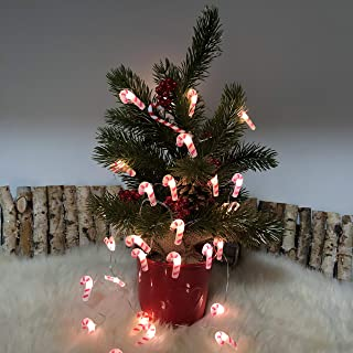 Holiday Mini Candy Cane String Light, Xmas Decoration 10 feet 30 LEDs Battery Operated with Remote for Tree Ornaments Thanksgiving Party Wreath Decor