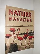 Best the flamingo 1946 Reviews