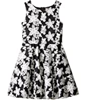 Nanette Lepore Kids - Novelty Embroidered Dress (Little Kids/Big Kids)