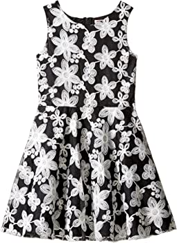 Novelty Embroidered Dress (Little Kids/Big Kids)