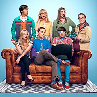Youngpin Big Bang Theory Series Finale Recap Art Poster Print,Unframed 20x20 Inches