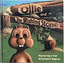 Best the wishing stone book Reviews