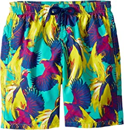 Birds of Paradise Swim Trunk (Big Kids)