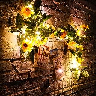 String Lights Cactus DEL Set