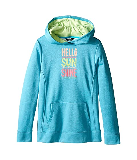 6521da457 The North Face Kids Surgent Pullover Hoodie (Little Kids Big Kids ...