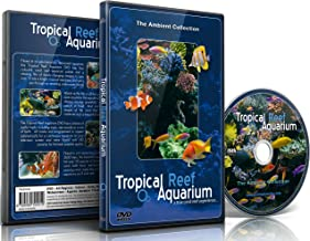 Best underwater dreams movie Reviews