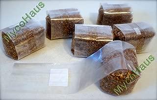6 lbs sterilized rye grain berries