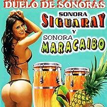 Best sonora siguaray el sauce Reviews