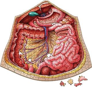 Genius Games Dr Livingston Anatomy The Human Abdomen Jigsaw Puzzle, 577-Pieces
