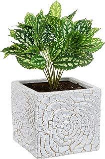 MyGift 6 Inch Decorative Spiral Design Square White Ceramic Plant Flower Container Pot/Windowsill Planter