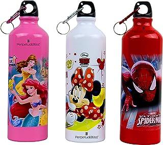 Laxmi Collection Premium Perpetual Bliss Fancy Disney Theme Insulated Leak Proof Metal Water Bottle,750ml, 7X7X26cm (Multi...