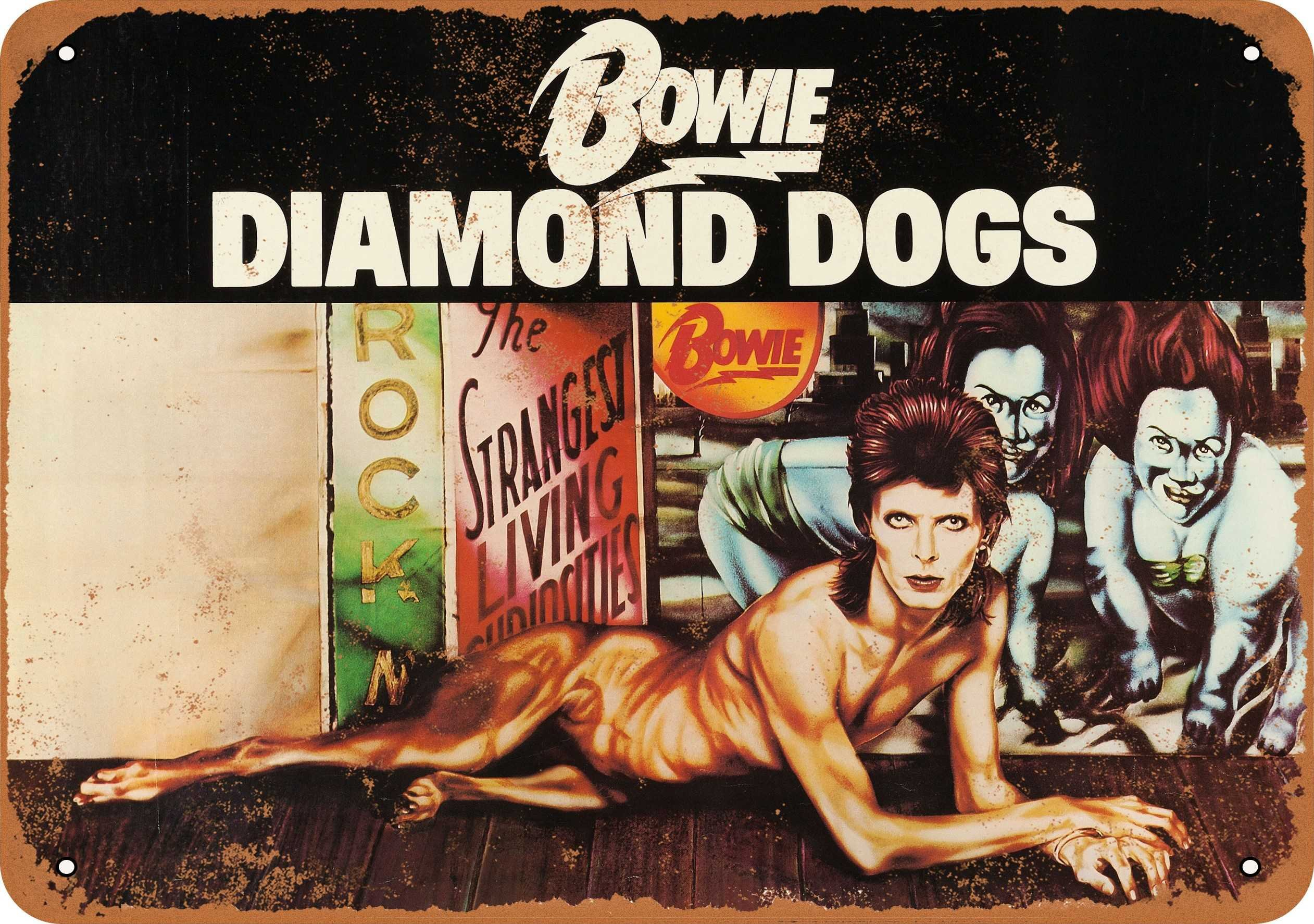 Amazon Com Wall Color 9 X 12 Metal Sign 1974 David Bowie Diamond Dogs Vintage Look Home Kitchen