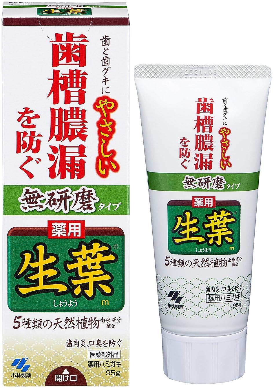 聞きます低いトレイ生葉(しょうよう) 無研磨タイプ 歯槽膿漏を防ぐ 薬用ハミガキ ハーブミント味 95g 【医薬部外品】