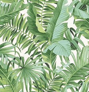 A-Street Prints 2744-24136 - Papel pintado, color verde