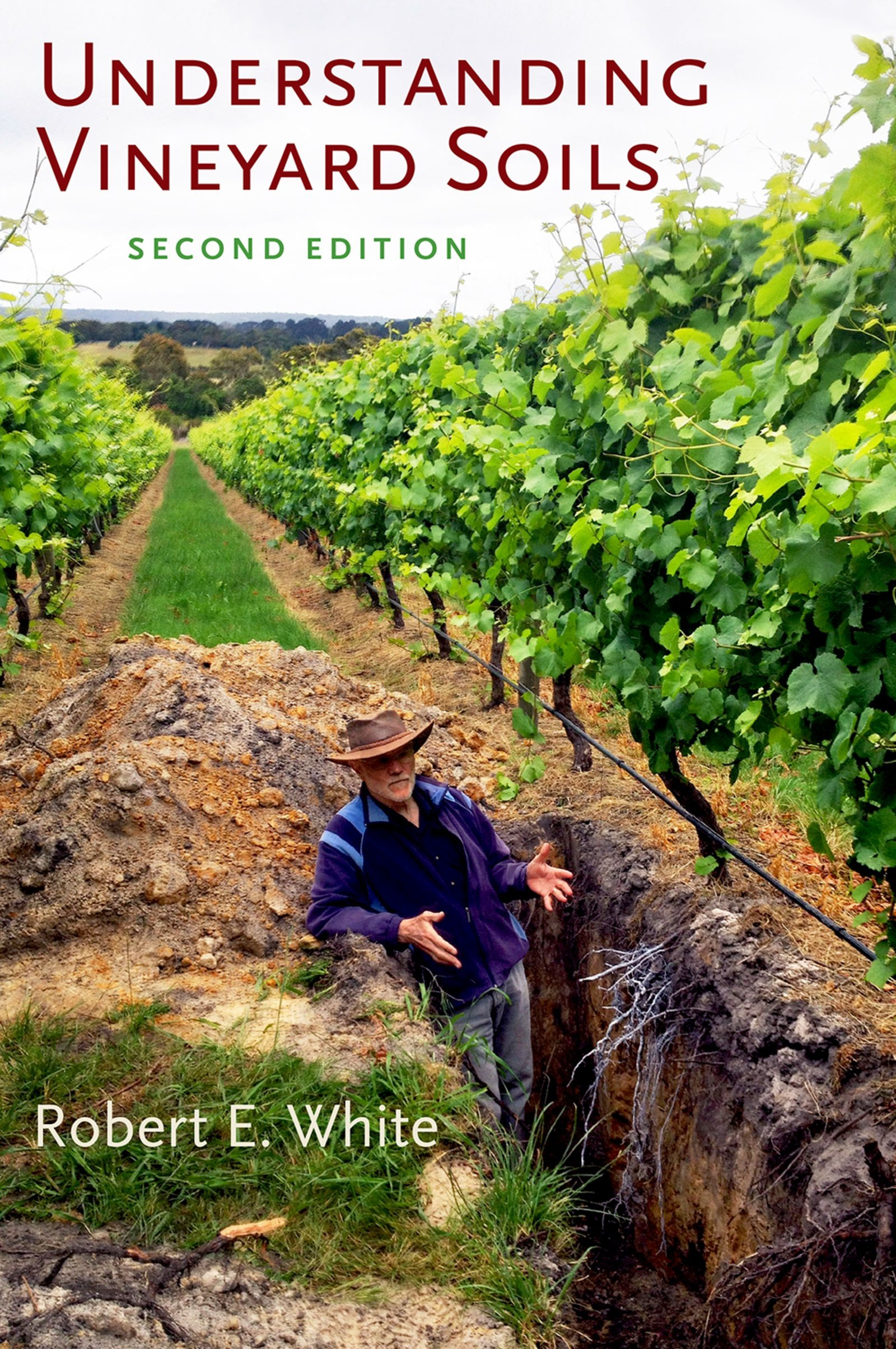 Image OfUnderstanding Vineyard Soils (English Edition)