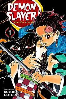 Demon Slayer: Kimetsu no Yaiba, Vol. 1: Cruelty (English Edition)