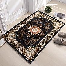 XingMart Indoor Doormat Front Floor Door Mat, Super Absorbent Low Profile Mats, Non Slip Durable Inside Dirt Trapper Mats ...