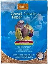 the paper birds