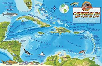 Best caribbean coral reef map Reviews
