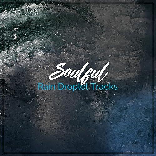 14 Soulful Rain Droplet Tracks for Zen White Noise ...