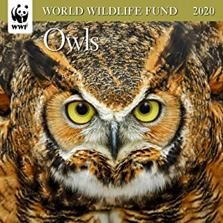 WWF Owls Mini Wall Calendar 2020 Monthly January-December 7