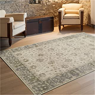 Superior Conventry Collection Area Rug, 8mm Pile Height with Jute Backing, Vintage Distressed Oriental Rug Design, Fashionable and Affordable Woven Rugs - 8' x 10' Rug
