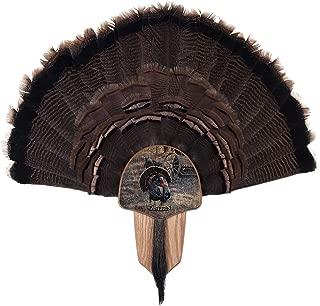 Walnut Hollow Country Turkey Fan Mount & Display Kit, Oak Grand Slam Series Eastern Turkey Image