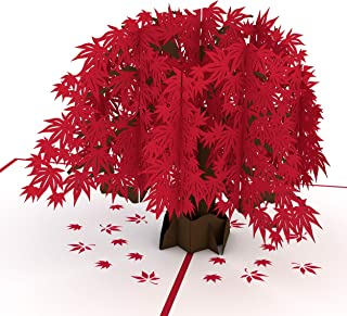 Lovepop Japanese Maple Pop Up Card - 3D Card, Mother's Day Pop Up Card, Fall Greeting Card, Card for Mom, Card for Wife, A...