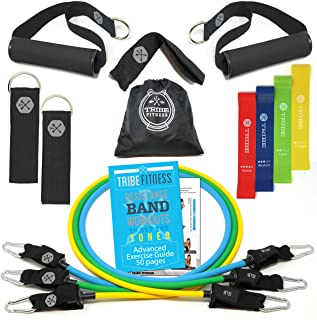 Resistance Bands Set Bundled with Loop Bands I Exercise Bands with Stackable Workout Bands, Door Anchor, Handles, Ankle St...
