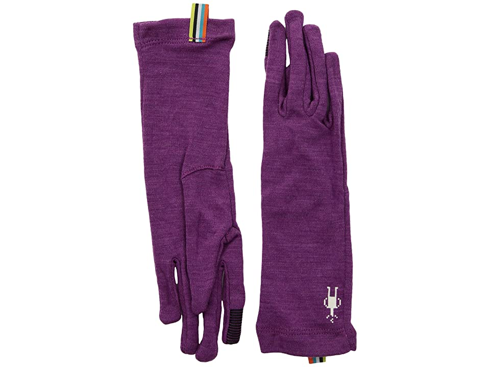 Smartwool Merino 250 Gloves (Meadow Mauve Heather) Extreme Cold Weather Gloves