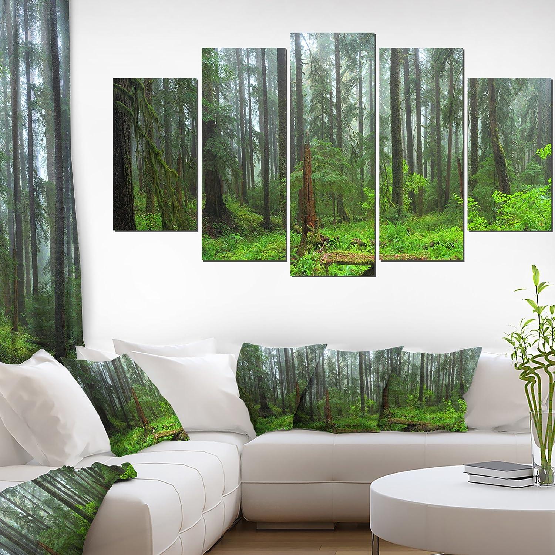 Designart HOH Rain Forest-Landscape Photography Canvas Print-60x32-5, 60x32-5 Panels Diamond Shape