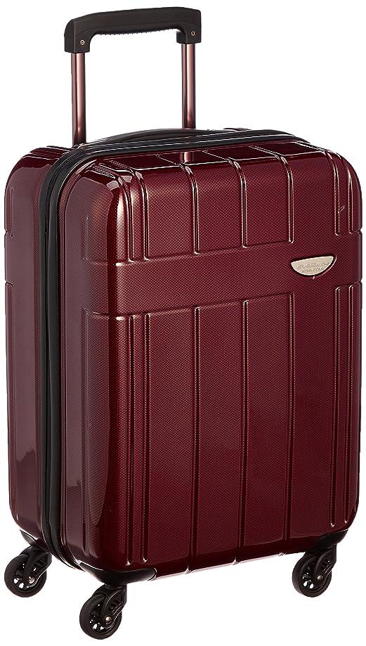 パッケージ聖域話をする[エバウィン] 軽量スーツケース 【Amazon.co.jp限定】機内持込可 35L 30 cm 2.8kg