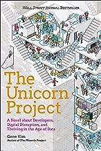 Unicorn Project