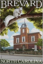 Brevard, North Carolina - Courthouse and White Squirrel (20x30 Premium 1000 Piece Jigsaw Puzzle, Made in USA!)