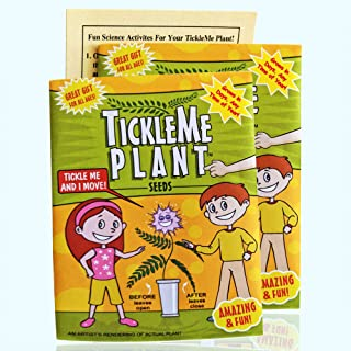 TickleMe Plant Seeds Packets (2) for Party Bag or Christmas Stocking Stuffer! Leave Fold Together When You Tickle It. Great Science Fun, Green and Educational. Easy to Grow Indoors. It Can Flower.