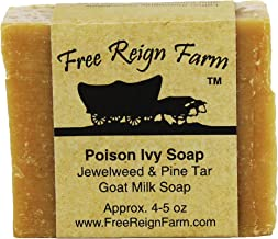 Poison Ivy Soap Infused with Jewelweed Extract, Made with All-Natural Goat's Milk for Soothing Poison Ivy Treatment (2)