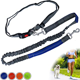 Zenify Hands Free Dog Lead for Running, Walking, Hiking, Canicross Dual Handle Comfortable Waist Belt Leash Band Reflective Stitching Adjustable Bungee Length Extendable 125cm - 190cm (Grey/Blue)