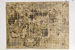 Solo Rugs Atlas Contemporary Low Pile Hand Knotted Area Rug, 9' X 12', Beige