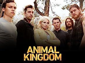 Animal Kingdom: Season 1