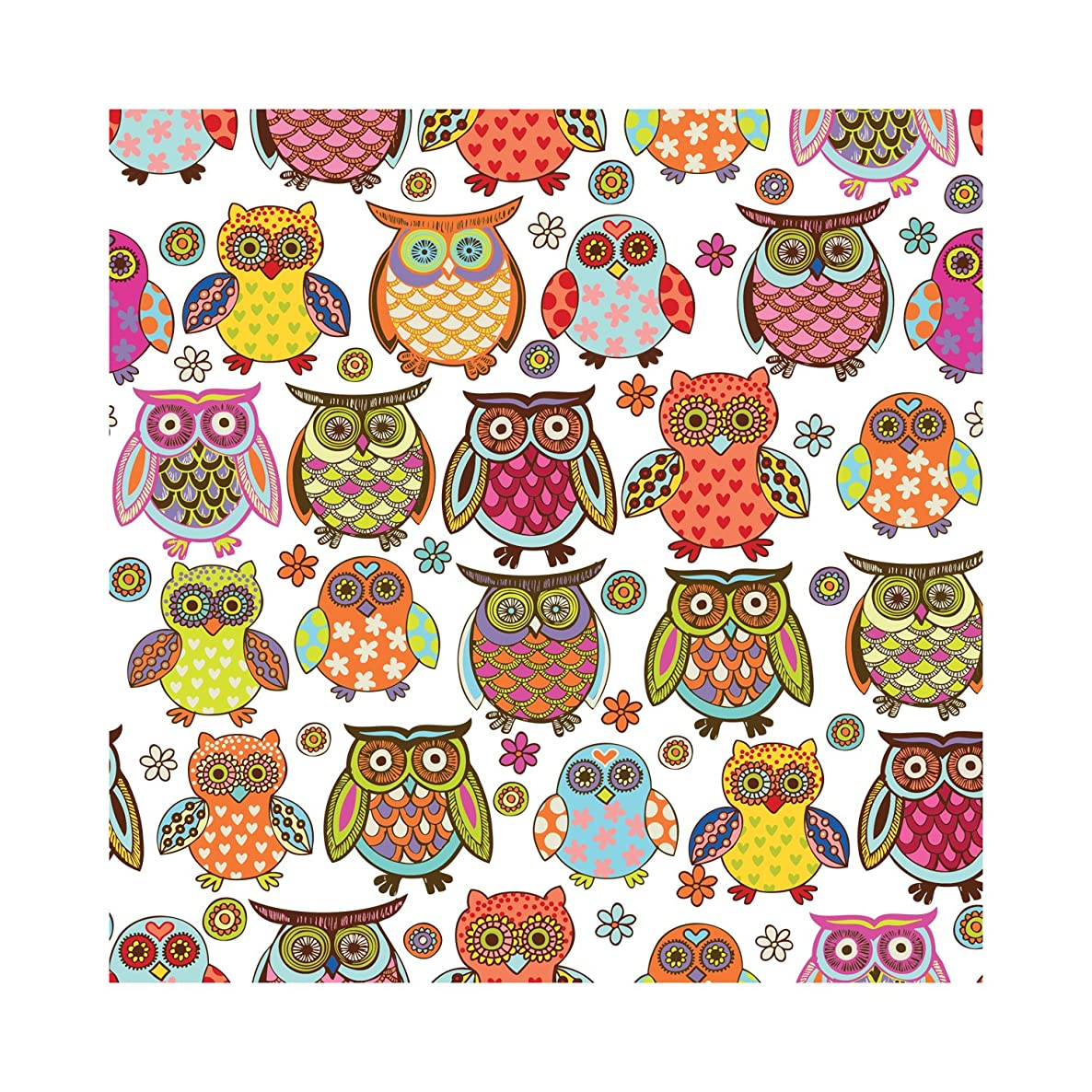 Jillson Roberts 24 Sheet-Count Premium Printed Tissue Paper Available in 11 Designs, Owlie