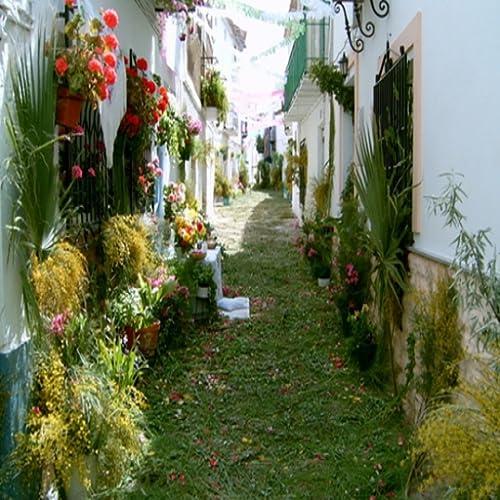 Hinojares Tourism