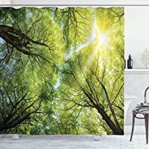 Ambesonne Farm House Decor Collection, The Warm Spring Sun Shining Through the Canopy of Tall Beech Trees Romantic Scene, Polyester Fabric Bathroom Shower Curtain, 75 Inches Long, Green Yellow