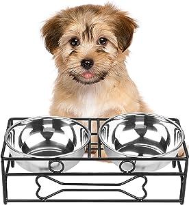Best Dog Bowls for Pomeranians