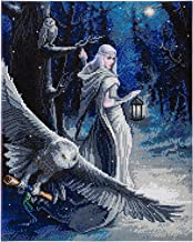 Midnight Messenger by Anne Stokes Crystal Art Full Size DIY Craft Kit 5D Diamond Painting Wall Art on Canvas 50 x 40 cm (Approx. 20 x 16 inches)