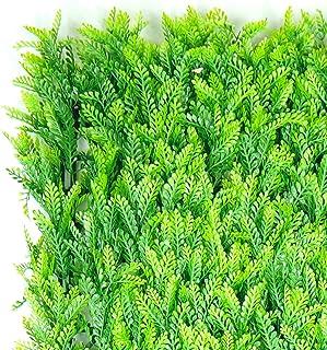 Be EverGreen FOLLAJE Sintetico, FOLLAJE Artificial, MUROS Verdes, Alta Calidad, Exterior E Interior 1 M2