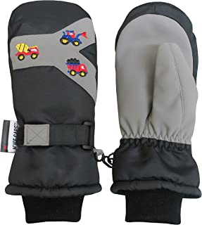 Little Boys Thinsulate Waterproof Embroidered Ski Snow Mittens