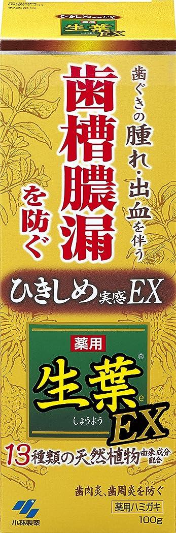 非難ガード平和生葉EX(しょうようEX) 歯槽膿漏を防ぐ 薬用ハミガキ ハーブミント味 100g 【医薬部外品】