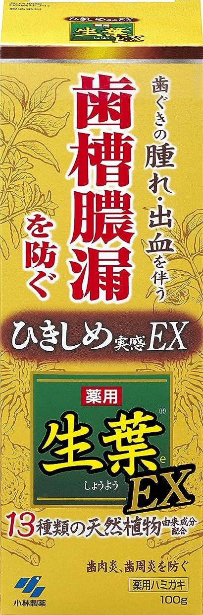 写真元気なとても多くの生葉EX(しょうようEX) 歯槽膿漏を防ぐ 薬用ハミガキ ハーブミント味 100g 【医薬部外品】